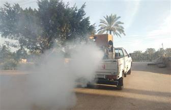 حملات مكثفة للقضاء على الناموس والقوارض بالبحيرة | صور