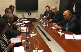 وزير الخارجية يلتقى نظيره الإثيوبى بمقر الاتحاد الإفريقى| صور
