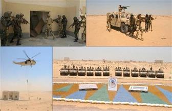 القوات الخاصة من مصر وتوجو تنفذان عملية ناجحة لاقتحام بؤرة إرهابية في ختام تدريبات الساحل والصحراء