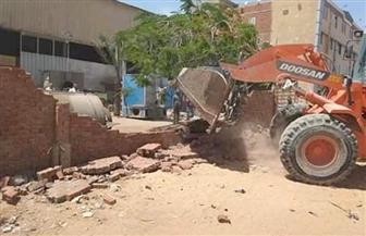 جهاز تنمية العبور يشن حملات لإزالة التعديات والمخالفات بالمدينة