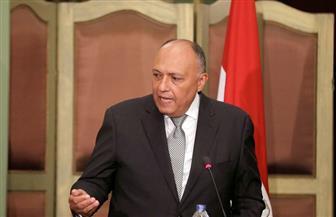سامح شكري: علاقتنا بروسيا شراكة إستراتيجية.. ومواقفنا بشأن سوريا متقاربة