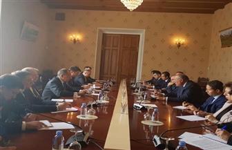 أداء الاقتصاد المصري والاستعدادات لقمة سوتشي.. تعرف على أهم تفاصيل مباحثات 2+2 بين مصر وروسيا |صور