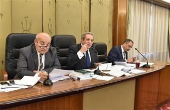 دستورية النواب توافق على قرار رئيس الجمهورية بتأمين وصول الغاز للمنازل