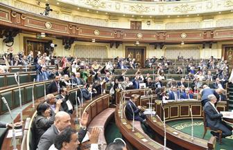 النواب يوافق على اتفاقية بين مصر وليتوانيا بشأن الإعفاء المتبادل من شرط تأشيرات الدخول للدبلوماسيين
