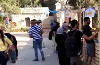 """""""أيام شارع نابلس"""" مهرجان يعيد الروح للمدينة الفلسطينية ويروج للسياحة في القدس"""