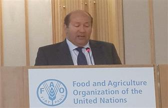 هشام بدر: نشاط مكثف وتقدير كبير للوفد المصري المشارك فى المؤتمر الوزارى للاتحادين الإفريقي والأوروبي