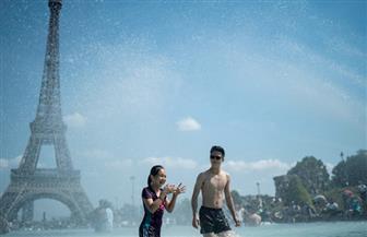 باريس والصيف.. ضحك ولعب وحب تحت ظلال نهر السين وبرج إيفل| صور