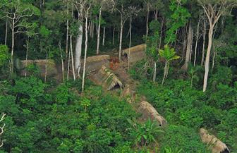 شاهد.. 30 مليون فدان من الغابات خسرتها المناطق الاستوائية