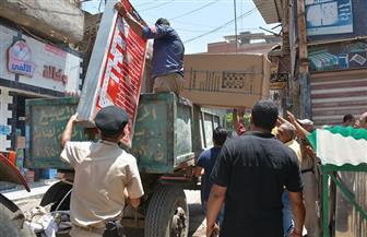 تحرير 700 محضر ومصادرة آلاف المضبوطات خلال حملة لإزالة الإشغالات بالمنصورة | صور