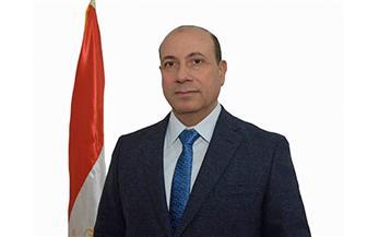 رئيس الجهاز المركزي للتعمير: شاركنا بحوالي 18 مليار جنيه لتنمية سيناء | فيديو