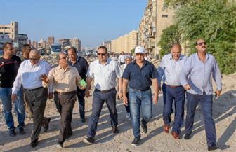 محافظ الإسكندرية ونواب بالبرلمان يتفقدون مركز معالجة المخلفات الطبية  صور