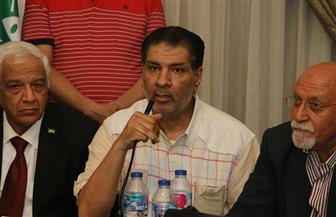 """نائب رئيس """"الوفد"""": 30 يونيو بمنزلة احتفال كبير لعودة مصر للمصريين"""