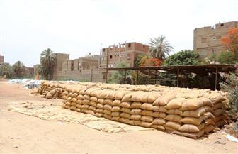 بنكر إسنا وصومعة أرمنت بالأقصر تتسلمان 18820 طنا من القمح