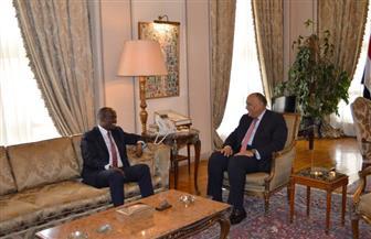 وزير الخارجية يستقبل نظيره الرواندي لبحث العلاقات الثنائية والقضايا الإفريقية   صور