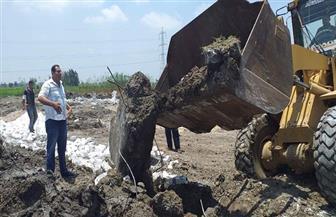 إزالة 748 إشغال طريق وإيقاف بناء 8 مباني مخالفة في حملة بالبحيرة | صور