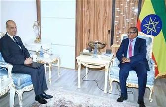وزير خارجية إثيوبيا يستقبل سفير مصر بأديس أبابا | صور