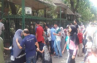 100 ألف زائر لحديقة الحيوان في ثاني أيام عيد الفطر | صور