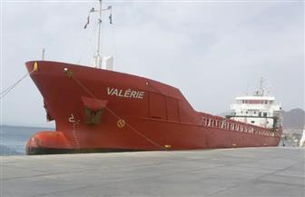 شحن 2300 طن مواد بترولية بميناء سفاجا | صور