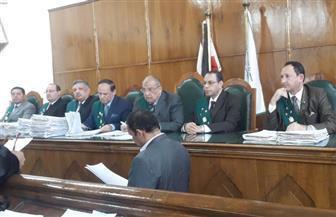 الإدارية العليا: موافقة المخابرات والدفاع والداخلية شرط لتقنين وضع اليد في سيناء
