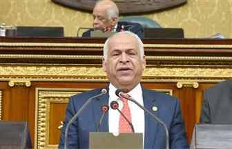 «صناعة البرلمان»: جلسات مكثفة لإلغاء مواد الحبس للمستثمرين بحضور الوزراء المعنيين