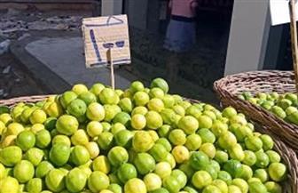 أمين نقابة الفلاحين: ارتفاع أسعار الليمون أزمة مفتعلة.. وانخفاضه خلال أيام
