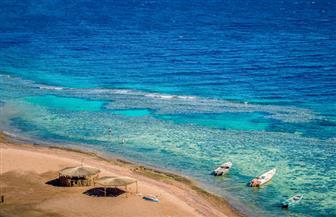 شعاب مرجانية ومحميات طبيعية.. شواطئ دهب الأجمل في الشرق الأوسط | فيديو