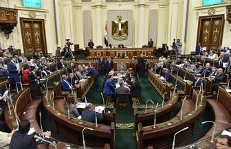 """مطالب برلمانية بتشكيل لجنة دائمة داخل """"الأوقاف"""" تختص بالشأن الإفريقي"""