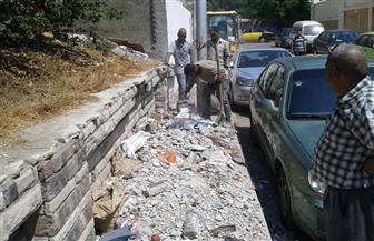رفع 68 طن مخلفات وقمامة من مناطق وسط الإسكندرية | صور