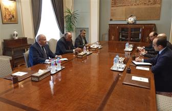 وزير الخارجية يؤكد أهمية توفير الرعاية اللازمة للمواطنين المصريين في الخارج| صور