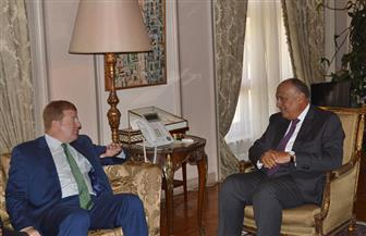 وزير الخارجية يستقبل نائب رئيس غرفة التجارة الأمريكية