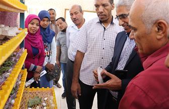 عميد كلية الزراعة بقنا: مصر تستهلك 250 طنا سنويا من الحرير |صور