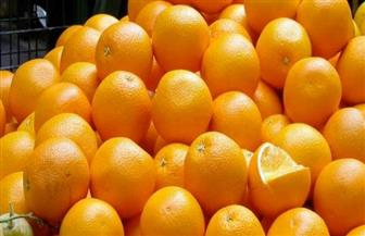 البرتقال المصري يحتل المركز الأول في الأسواق الصينية