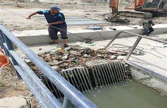 رئيس مصلحة الري يتفقد حالة المياه في بورسعيد   صور