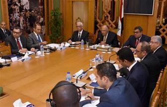 وزير الخارجية يؤكد اهتمام مصر بدعم جهود التنمية الشاملة في إفريقيا   صور