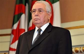 الرئيس الجزائري يصل إلى القاهرة لمؤازرة منتخب بلاده في نهائي إفريقيا