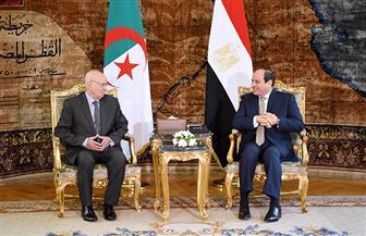 تفاصيل لقاء الرئيس السيسي ونظيره الجزائري | فيديو وصور