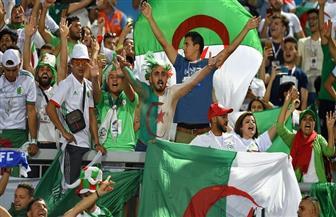 أمم إفريقيا.. بدء توافد الجماهير الجزائرية على إستاد القاهرة