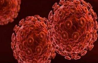 استئصال الفيروس المسبب للإيدز من المجموع الوراثي لحيوانات حية للمرة الأولى