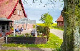 دراسة: الشركات المتوسطة في المناطق الريفية بألمانيا تعاني نقص العمالة الماهرة