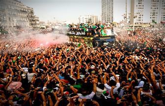 استقبال أسطوري لبعثة الجزائر عقب الفوز ببطولة أمم إفريقيا |صور