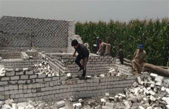إزالة 10 حالات تعد على الأراضي الزراعية بمركز منوف | صور