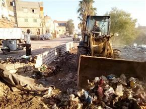 حملات لرفع الإشغالات والقمامة بشوارع الحامول ودسوق | صور