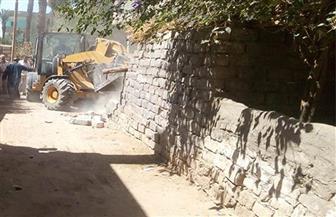 إزالة 37 حالة تعدٍ على أراضي أملاك الدولة في مركز البداري وحي غرب| صور