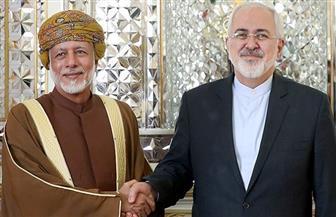وزيرا خارجية عمان وإيران يبحثان في طهران تطورات الأوضاع بالمنطقة