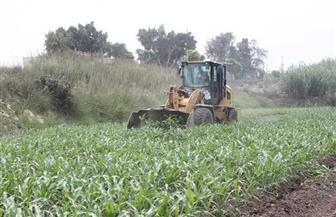 في خامس أيام الموجة 13.. إزالة 103 حالات تعد على أملاك الدولة والأراضى الزراعية بالبحيرة | صور