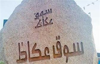 مصر و10 دول عربية تستعرض تراثها الثقافي في النسخة 13 من مهرجان سوق عكاظ