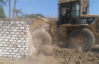 إزالة تعديات على 200 فدان من أملاك الدولة ونهر النيل بسوهاج   صور