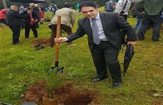 سفارة مصر بإثيوبيا تشارك في مبادرة غرس 200 مليون شجرة في أديس أبابا | صور