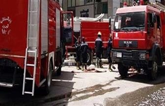 """""""الحماية المدنية"""" تسيطر على حريق بمعرض سيارات فى المحلة الكبرى"""
