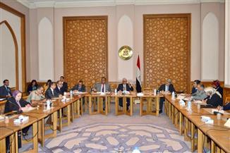 نائب وزير الخارجية للشئون الإفريقية يترأس اجتماع اللجنة الدائمة للتعاون مع إفريقيا